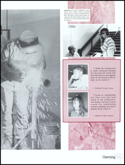 1991 Danville High School Yearbook Page 7
