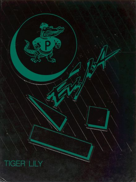 1988 Port Allegany High School Yearbook Cover