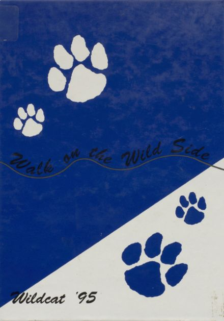 1995 Welch High School Yearbook Cover