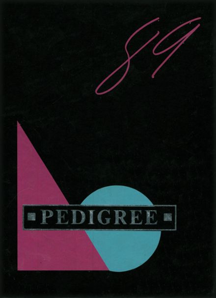 1989 West Albany High School Yearbook Cover